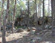 25362 Castle Rock Trail, Custer image