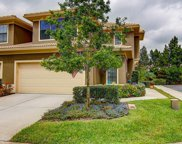 2575 Silverback Court, Palm Harbor image