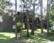 4 Cedar Tr Unit 4, Springville image