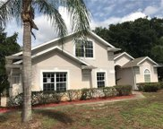 220 Capri Cove Place, Sanford image