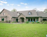 330 Mountain Forest Trl, Calera image