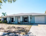 12504 Limpet Drive, Tampa image