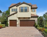1581 Marinella Drive, Palm Harbor image