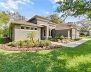 2732 Tree Meadow Loop, Apopka image