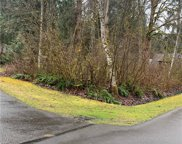 16007 Shuksan Rim Drive, Glacier image
