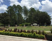 35631 Panther Ridge Road, Eustis image
