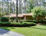 12 Water Thrush Place, Hilton Head Island image