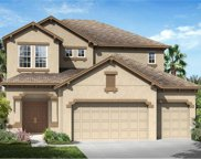 33198 Whisper Pointe Drive, Wesley Chapel image