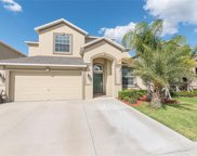 12424 Ballentrae Forest Drive, Riverview image