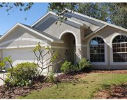 2520 Meadow Oaks Loop, Clermont image