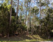 30 Ryapple Lane, Palm Coast image