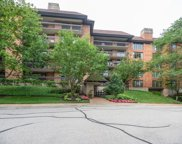 3851 Mission Hills Road Unit 102, Northbrook image