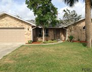 35 Cloverdale Ct N, Palm Coast image