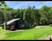 509 Deep Creek Road, Chehalis image