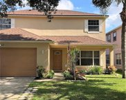 113 Knights Hollow Drive, Apopka image