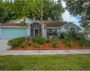 1707 Country Terrace Lane, Apopka image