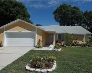 16021 Eagle River Way, Tampa image