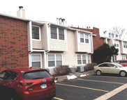 1366 Wyndham Circle Unit 205, Palatine image