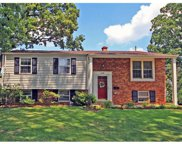 149 Huntleigh Forest, St Louis image