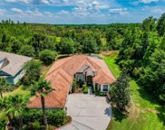 10501 Mistflower Lane, Tampa image