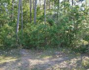 Lot 0 Brace Dr., Pawleys Island image