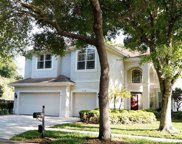 6138 Native Woods Drive, Tampa image