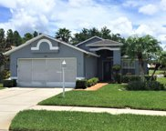 1146 Winding Willow Drive, Trinity image