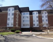 175 Lake Boulevard Unit 327, Buffalo Grove image