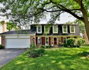 206 White Fawn Trail, Downers Grove image