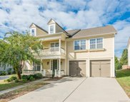11526  Fernleigh Place, Indian Land image