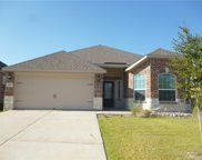 2201 Mulberry Drive, Anna image