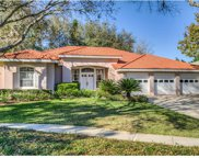 17803 Green Willow Drive, Tampa image