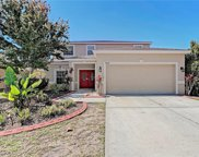 10006 Smarty Jones Drive, Ruskin image