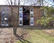 5538 East Lake Drive Unit D, Lisle image