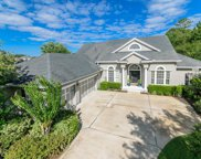 1431 CRESTED HERON CT, St Augustine image