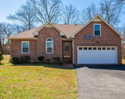 146 Candle Wood Dr, Hendersonville image
