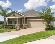 16007 Yelloweyed Dr, Clermont image
