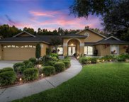 3505 Country Creek Lane, Valrico image