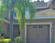 6216 Parkside Meadow Drive, Tampa image