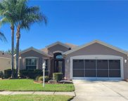 1203 Winding Willow Drive, Trinity image