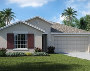 5033 White Chicory Drive, Apollo Beach image