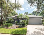 5336 Lake Bluff Terrace, Sanford image