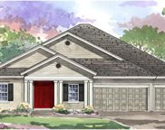 8130 Swiss Chard Circle, Land O Lakes image