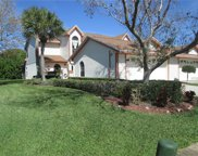 14875 Feather Cove Road, Clearwater image