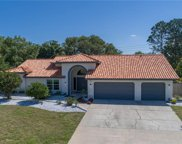 3090 Doxberry Court, Clearwater image