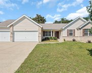 725 Autumnwood Forest, Lake St Louis image