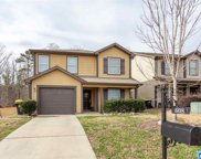 608 Kincaid Cove Ln, Odenville image
