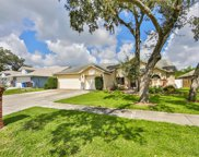 1404 Clarion Drive, Valrico image