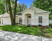 2107 Fawn Meadow Drive, Valrico image