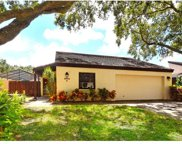 3902 Glen Oaks Manor Drive, Sarasota image